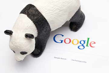 GooglePandaOk