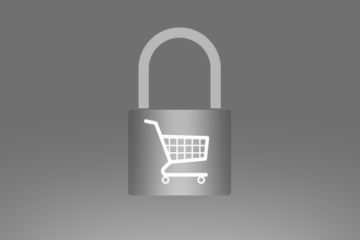 seguridad_ecommerce