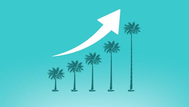 Comienza a prepararte contra la baja del eCommerce en verano