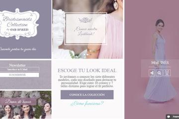Bridesmaids: opiniones y comentarios
